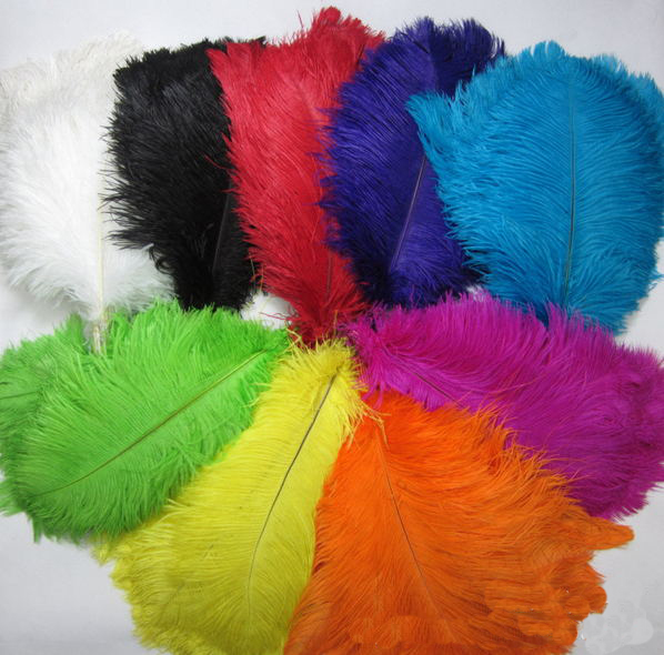 Beautiful 15-80cm Party Stage Decoration Colored Bulk Ostrich Feathers