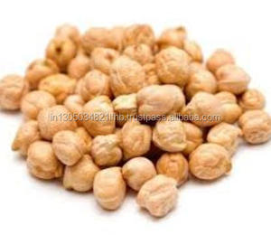 Indian Top Quality Kabuli Chickpeas at Cheap rate