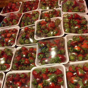 Fresh Strawberries From South Africa..