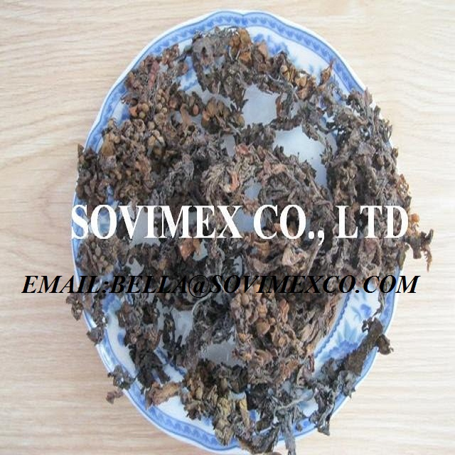 Organic Fertilizer dried SARGASSUM seaweed
