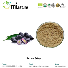 Best Quality Indian Herb Jamun Fruit Extract