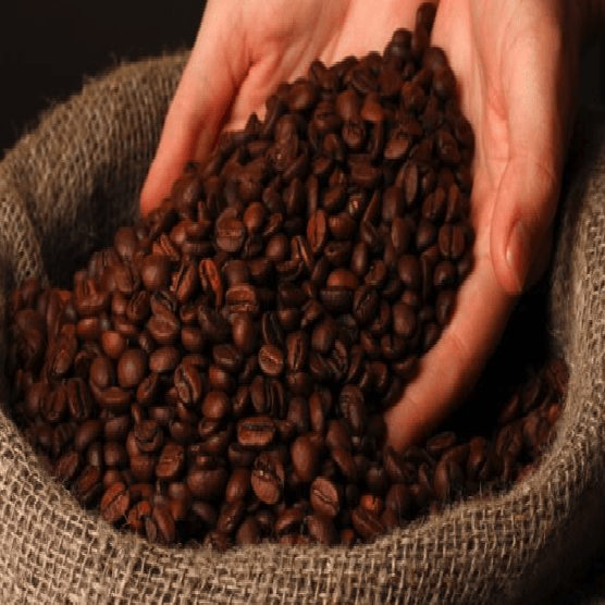 ROBUSTA COFFEE BEANS, ARABICA COFFEE BEANS , GREEN ROBUSTA COFFEE BEANS , DRIED ROBUSTA COFFEE BEANS , ROASTED ROBUSTA COFFEE B