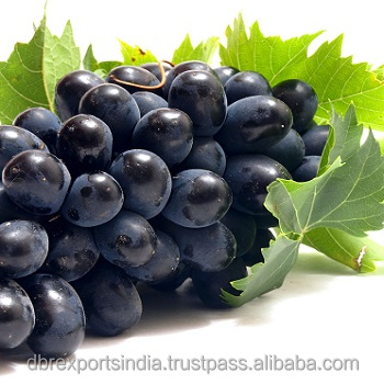 Grapeseed Oil / Vitis Vinifera Oil