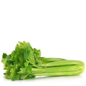 Fresh Vegetable Importer For London, Fresh Vegetable Importer For