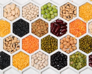 Lentils Eyes, Lentils Eyes Suppliers and Manufacturers at