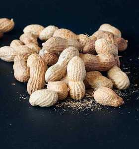Raw peanuts in shell , fresh crop 2019 , high quality best price from Egypt