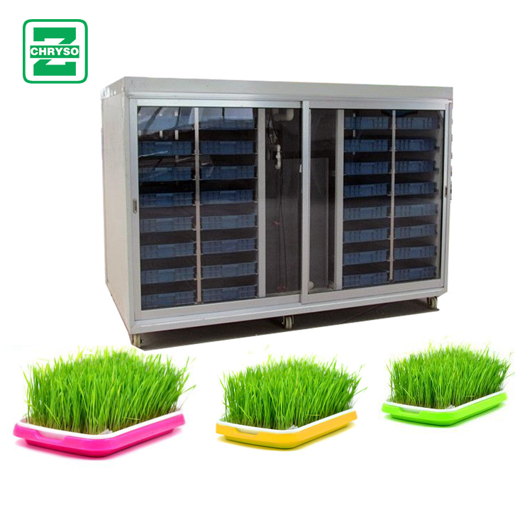 Bean Sprout Maker Bean Sprouts Growing Machine Mung Bean Processing Machine