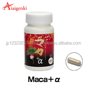 Manufacture Supplement, Manufacture Supplement Suppliers and