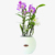 Garden plastic self watering round shaped planter