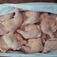 worth ,Premium Quality Processed Frozen Chicken Feet/Paws /Wings for sale