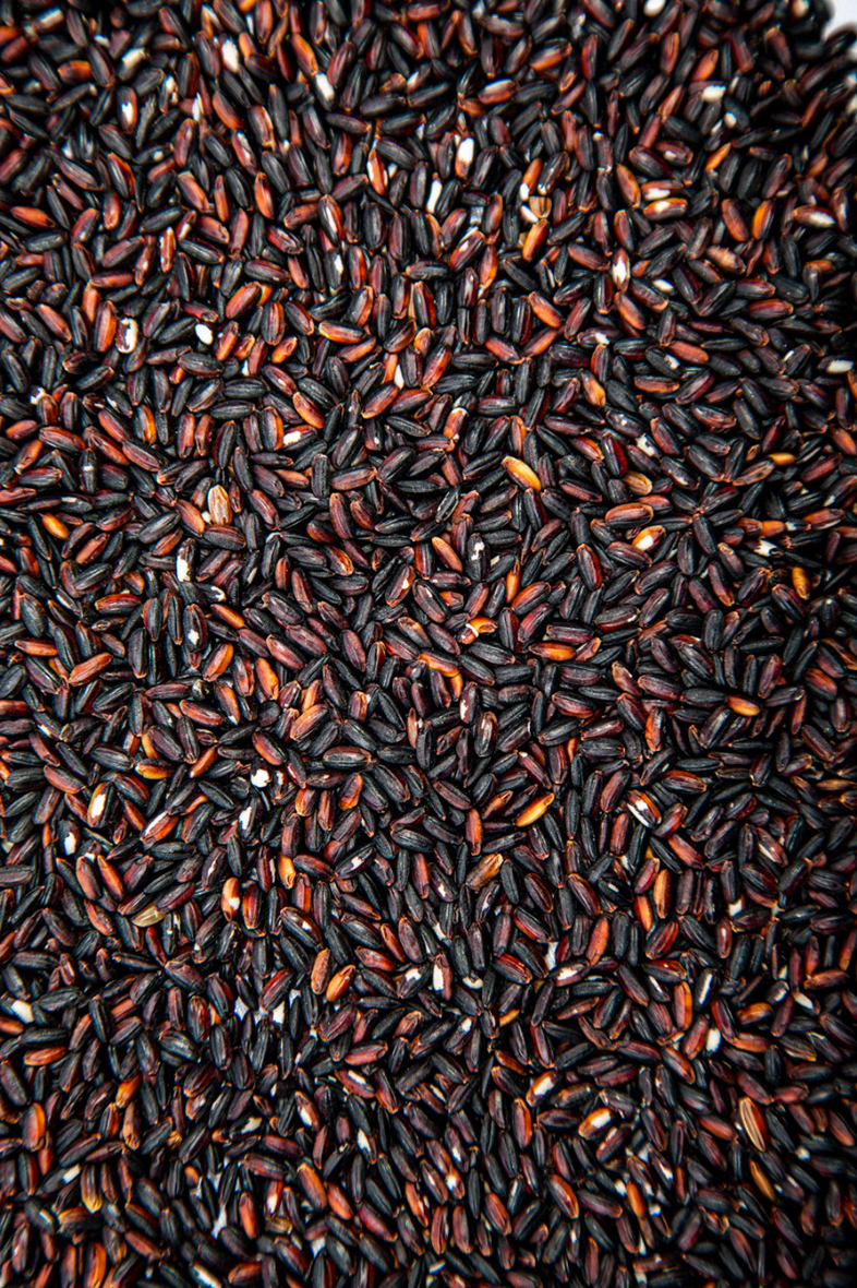 Black rice round grain wholesale from manufacturer, new harvest best quality, cheap price