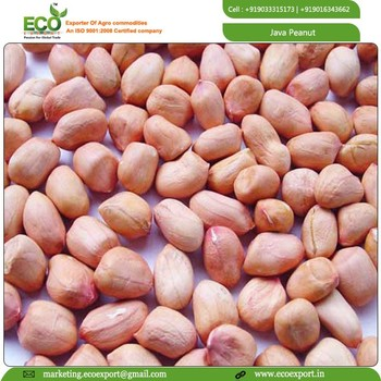 INDIAN PEANUTS IN BEST PRICE FOR EXPORTER