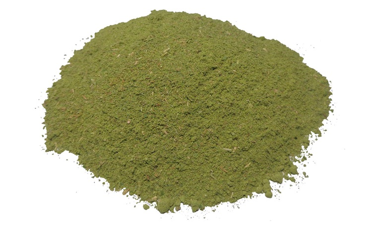 Best Selling High Purity Ziziphus Nummularia Extract SIDR Powder Supplier
