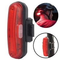 Flash Sale Bike Light 2019 USD Rechargeable LED Tail Lights with Free Helmet Mount Rear 100 Lumens COB ABS